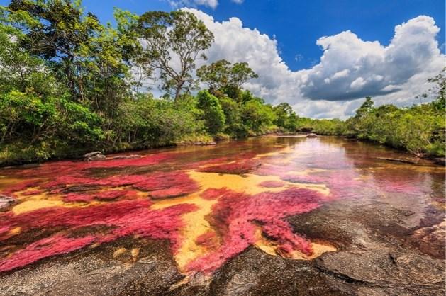 Natuurfenomeen tovert deze rivier om tot 'vloeibare regenboog'