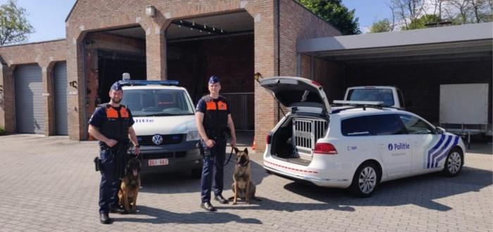 Nieuwste krachten politie Kempenland heten Obi en Racky