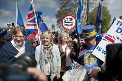 Voor Limburg blijft alleen Vautmans over in Europa