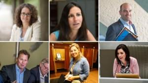 De Limburgse slachtoffers van de Vlaams Belang-tsunami