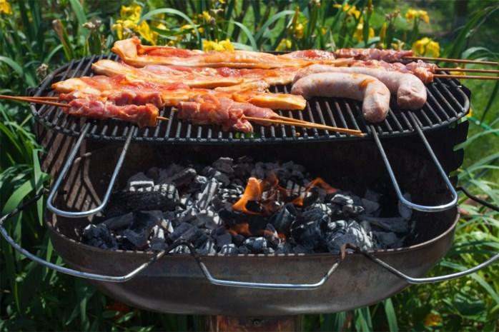 100 uren werkstraf voor Maasmechelaar die boekhouding opbrandt in barbecue
