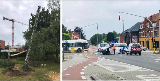 Koolmijnlaan in Beringen tijdelijk afgesloten voor opmeting stormschade