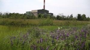 Afvaloven Houthalen wordt biomassacentrale