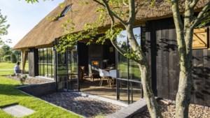 """In dit Hasselts tuinhuis kan je wonen: """"We wilden zomer en winter genieten"""""""