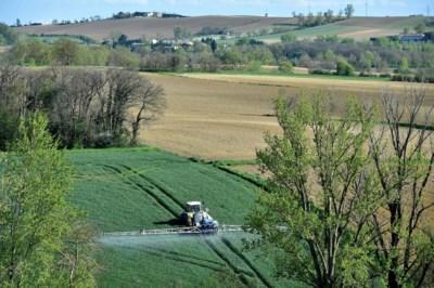 Omstreden pesticide duikt op in 5,5 procent van voedingsstalen