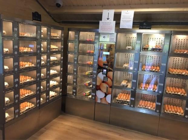 """Boer installeert tweede eierautomaat in Lanaken: """"700 tot 1.000 eieren per dag"""""""