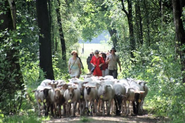 Productverkenningsdag voor baliemedewerkers Limburgse toeristische infokantoren