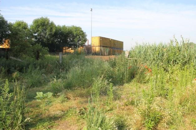 Naakte vrouw dood aangetroffen in weide vlak bij Belgische grens