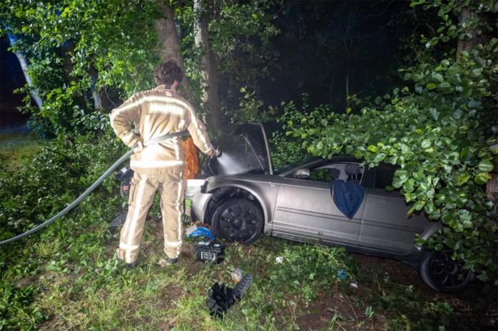 Vijf gewonden bij klap tegen boom