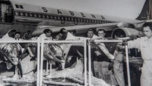 Vergeten toerisme in Limburg: hoe vijf dolfijnen van Florida naar Wellen werden gevlogen