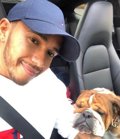 """Lewis Hamilton: """"Mijn honden mis ik meer dan de gevechten met Vettel"""""""