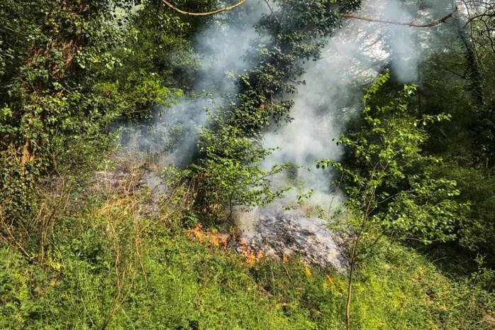 Twee buitenbrandjes in Maasland: brandfase geel blijft gelden