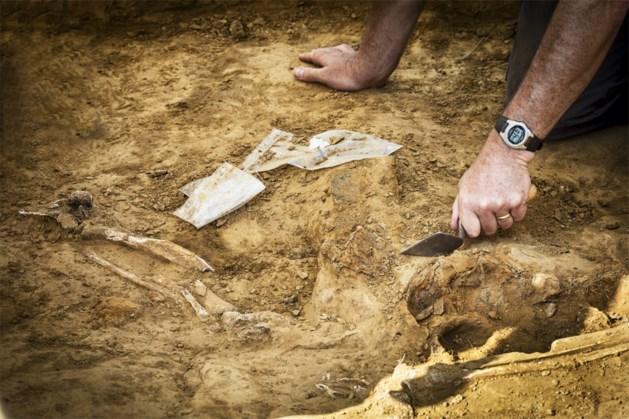 """Menselijke beenderen gevonden nabij Waterloo: """"Belangrijke ontdekking"""""""
