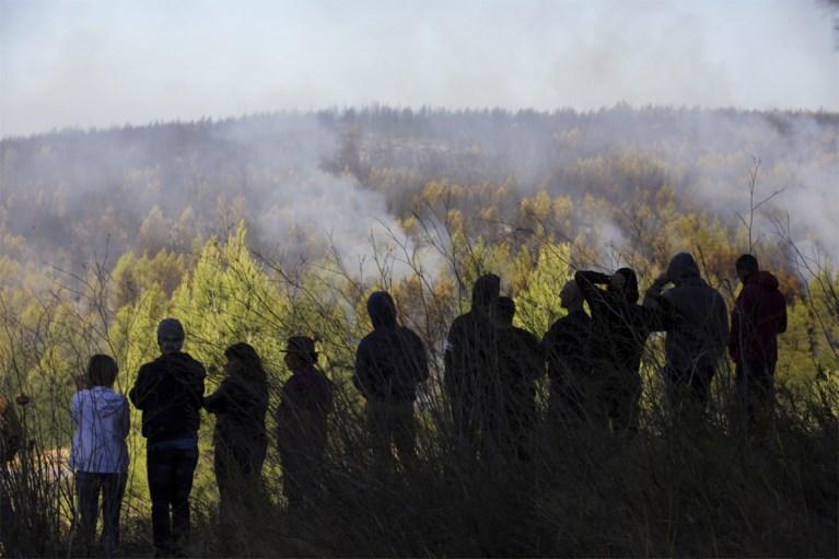 Honderden brandweermannen bestrijden bosbranden in Portugal: vier van hen gewond