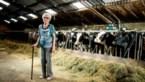 """Gertrude (91) woont nog op haar boerderij: """"Moderne boer heeft het veel zwaarder"""""""