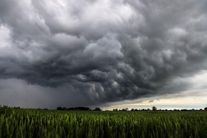 Korte maar hevige buien trekken vandaag over Limburg