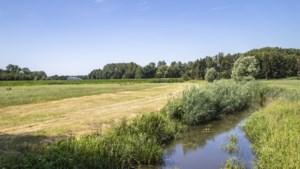"""Waterexpert: """"Het is kurkdroog in Vlaanderen en dat is onze eigen schuld"""""""