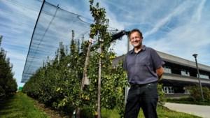 's Werelds grootste fruitcongres houdt halt in Alden Biesen