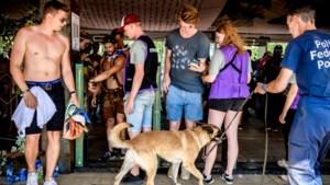 Limburgse dancefestivals reageren verontwaardigd op naaktfouilles