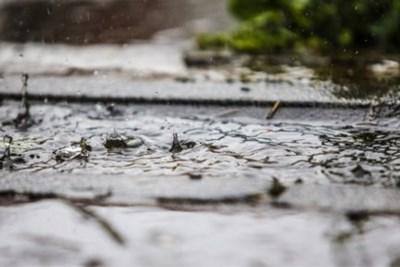 Pukkelpoppers krijgen vooral zondagochtend veel regen te verwerken