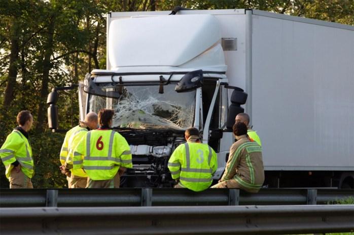 Vrachtwagens botsen in Hasselt: trucker moet bevrijd worden