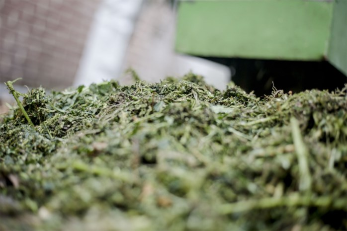 Drugs gevonden bij controle op oefenterreinen van VDAB op Calvarieberg