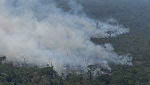 """Duitsland: """"Blokkeren van Mercosurakkoord is niet de gepaste reactie op bosbranden in Amazone"""""""