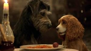 Disney deelt eerste trailer van 'Lady and the Tramp' met échte honden