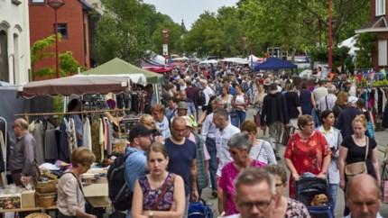 Extra rommelmarkt op Pauwengraaf in Eisden