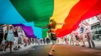 Wetenschappers ontdekken 'homo-genen', maar kunnen we homoseksualiteit dan voorspellen?
