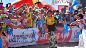 Topdag in de Vuelta voor Team Jumbo - Visma: Kuss wint zware bergrit, Roglic nog steviger aan de leiding