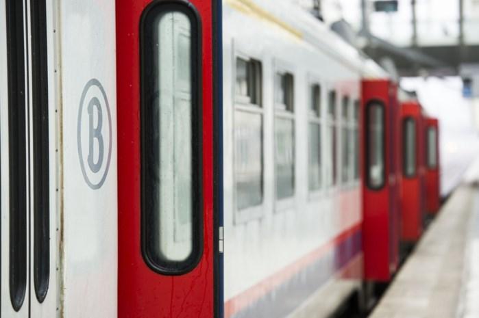 Treinpassagier betrapt dief en krijgt slaag