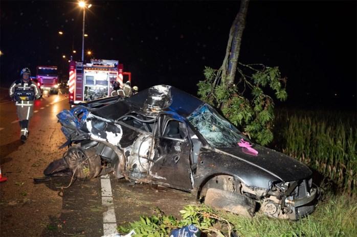 Gedrogeerde man zwaargewond na crash tegen boom in Riemst