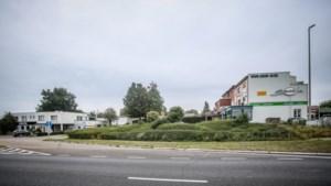 Waarom Sint-Truiden geen McDonald's wil aan de Industrielaan