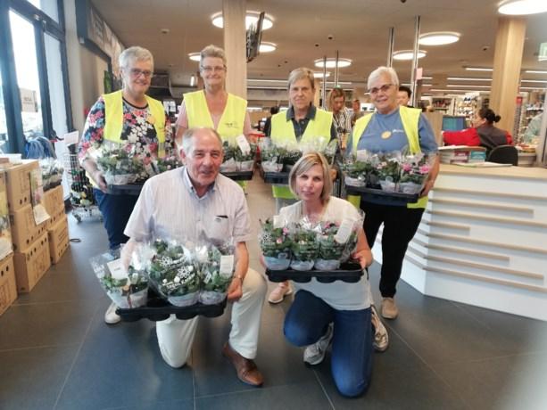 1.500 plantjes verkocht voor Kom op tegen Kanker