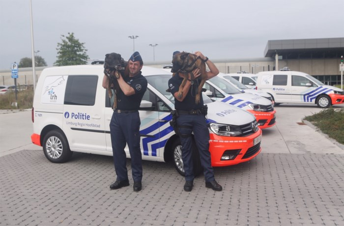 Nieuwe voertuigen voor hondenbrigade rijden op gas