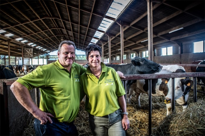 Nog maar 2.843 landbouwbedrijven in Limburg