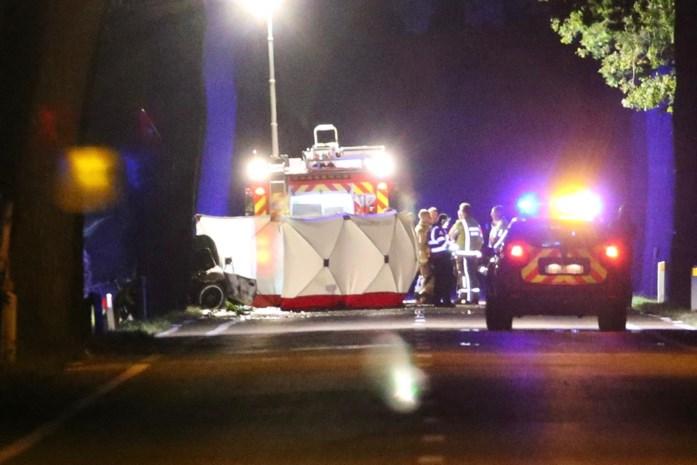 Man (26) sterft na zware klap tegen boom in Tessenderlo