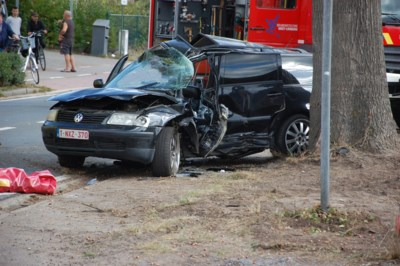 Autobestuurder zwaargewond na botsing tegen boom