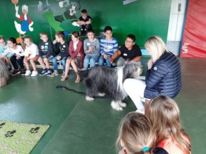 Goede hondenbaasjes in Domino Genenbos