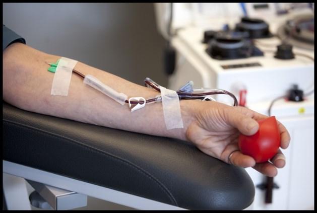 Grondwettelijk Hof vernietigt artikel over bloeddonatie van homoseksuelen