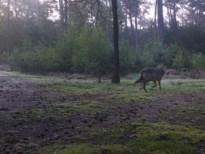 """Jagers pikken beschuldigingen niet: """"We overwegen klacht wegens laster en eerroof"""""""
