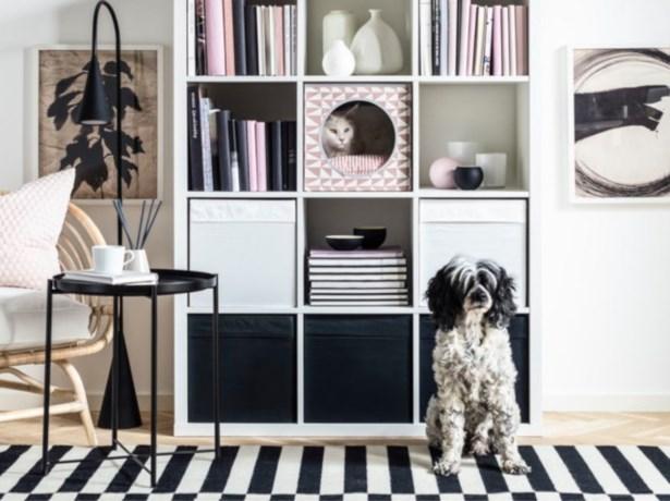 Nog meer mooie meubelen om je huisdieren in de watten te leggen