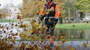 Gemeenten krijgen verbod op bladblazers en bosmaaiers