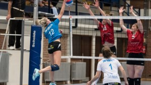 Limburg boven in eerste divisie: sterk Alken wint topper tegen Zoersel