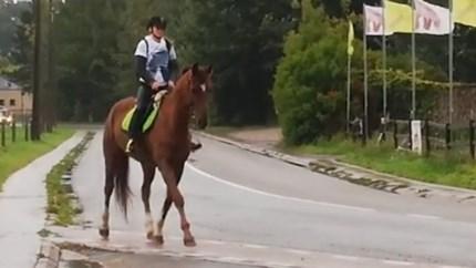 Bus komt niet opdagen? Dan gaat Vlaamse Yasmine (16) maar te paard naar school
