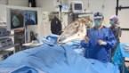 Paardenkliniek in Bree opereert als eerste in de wereld met augmented reality