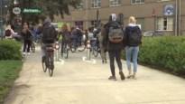 Hangjongeren opgepakt op Spectrumcollege in Beringen