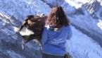 Arend vliegt met GoPro over Alpen en dat levert indrukwekkende beelden op