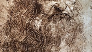 Een dag in de wasmachine met Leonardo da Vinci